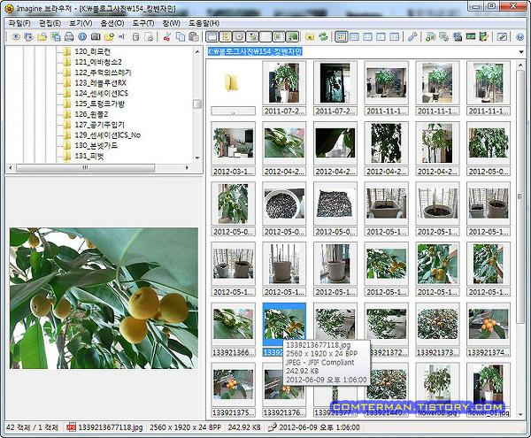 이미지뷰어 ImageViewer FastStone 무료 Freeware Imagine