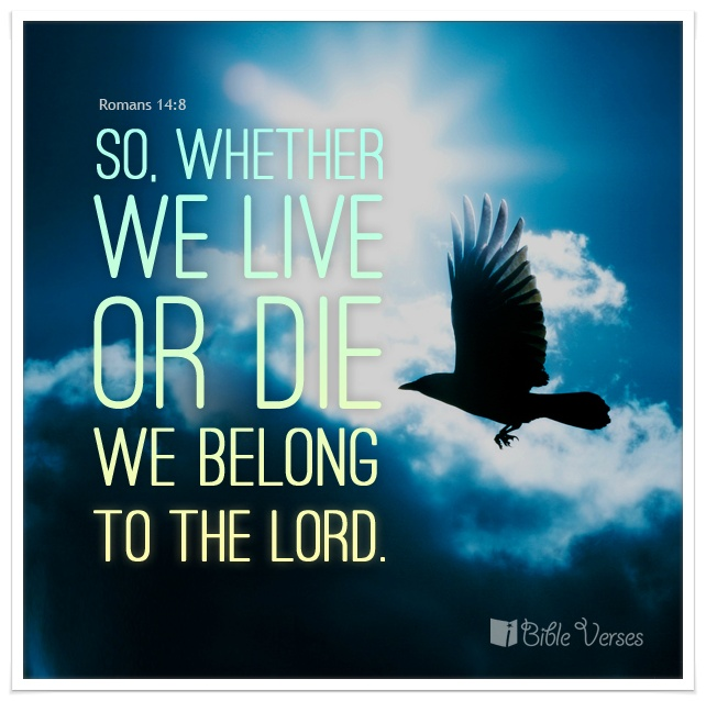 We belong to the lord