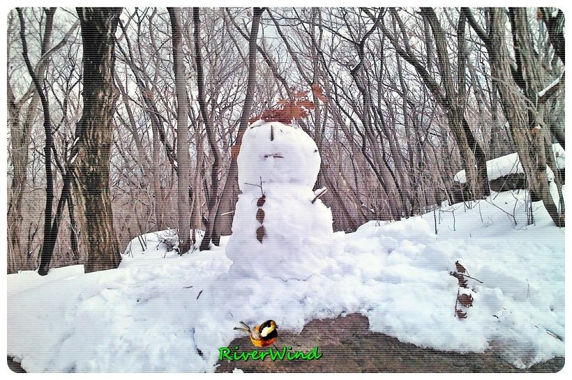 눈오는 금정산