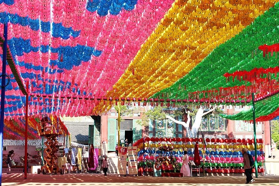 서울의 천년사찰 조계사의 웅장한 연등 풍경