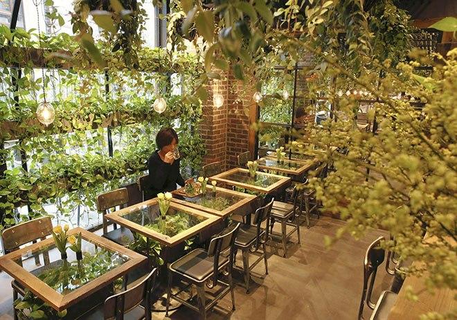이슈는 유머를 낳는다 꽃으로 카페를 열다 세계 곳곳의 플라워 카페