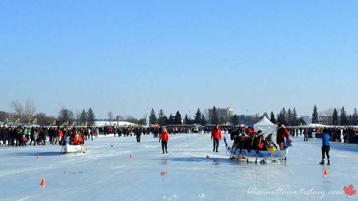 북미 최초 아이스 드래건 보트 축제입니다