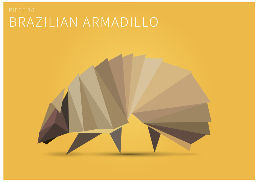 Piece 10 Brazilian armadillo