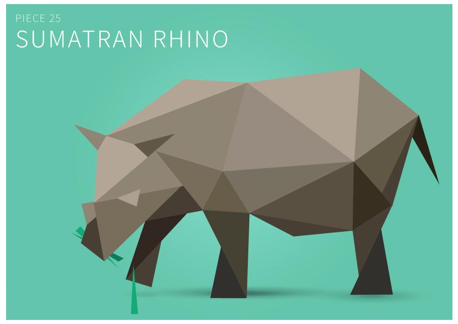 Piece 25 Sumatran rhino
