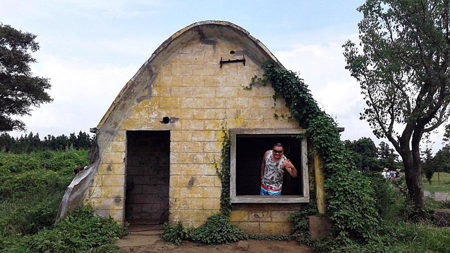 제주도에 셀프 스냅장소로 핫 한 성이시돌 목장 테쉬폰 가 보셨나요?