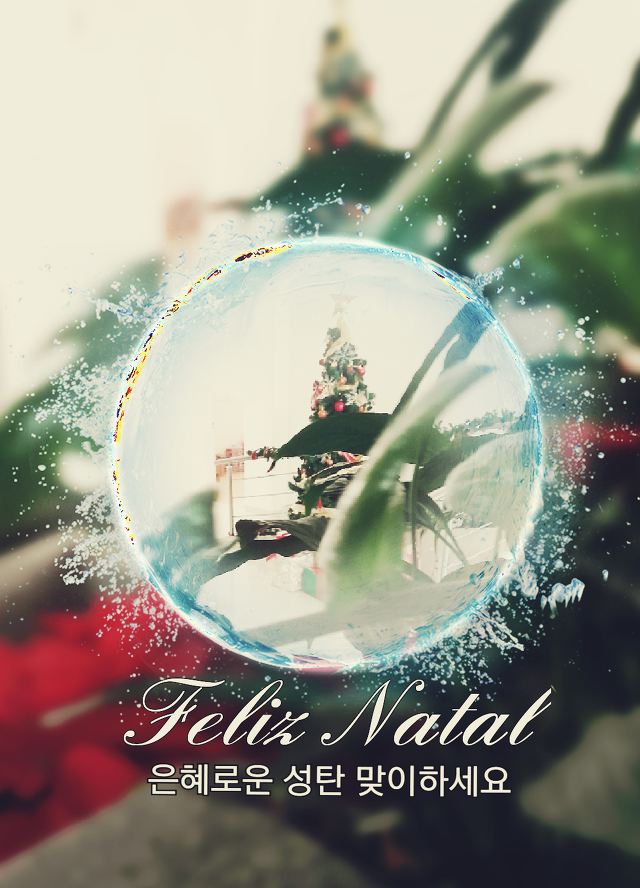 [포르투갈어] 포르투갈어로 듣고 보는 크리스마스 캐롤 (feat. 유튜브)