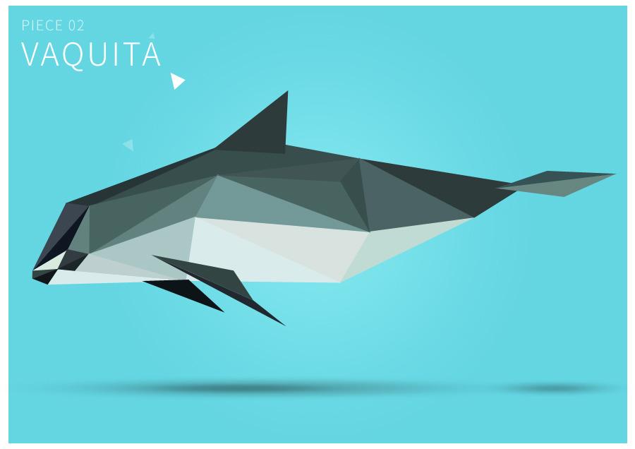 Piece 02 Vaquita