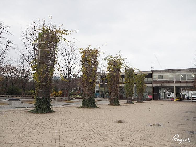 쓸쓸한 서울숲