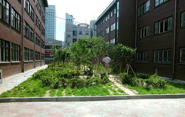 대전둔산초등학교 화단숲