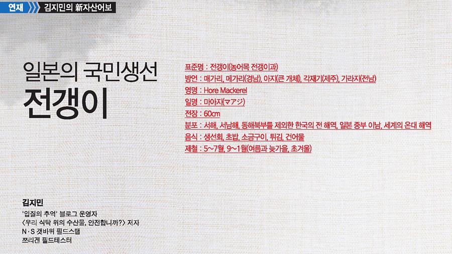 김지민의 新자산어보 '전갱이'