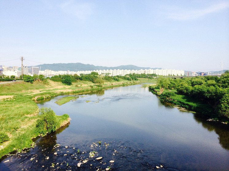 bicycle, Camera, iPhone, Korea, photo, Picture, Riding, river, seoul, 라이딩, 사진, 서울, 아이폰, 자전거, 카메라, 탄천, 풍경, 한강, 한국