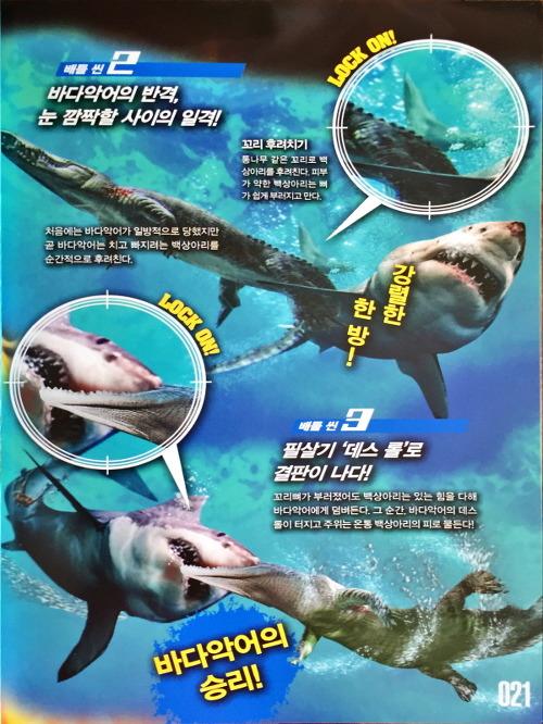 최강 동물왕