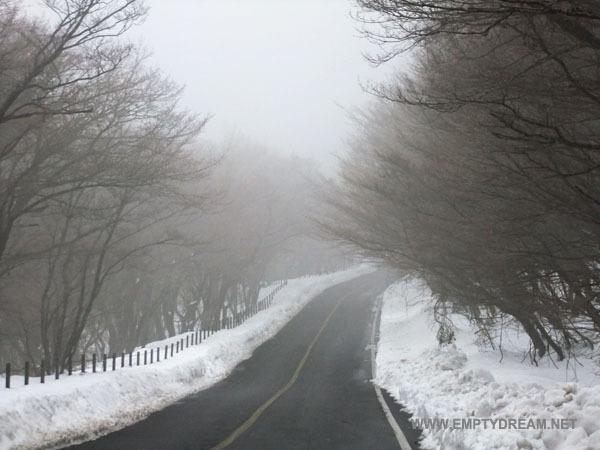 왕복 한 시간으로 즐기는 겨울철 제주도 눈꽃 산행 - 한라산 어리목 어승생악