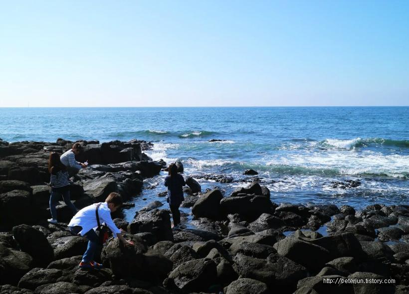 바다와 소년