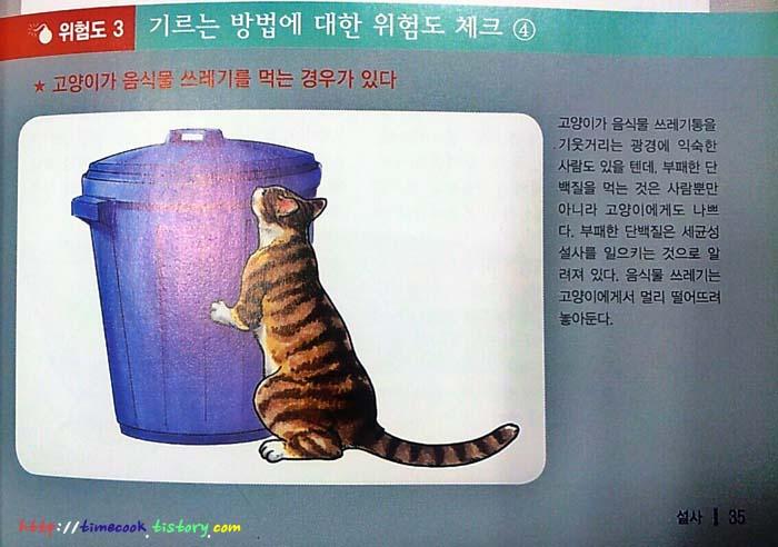 고양이 도서 추천, 고양이 질병사전, 고양이 도서, 고양이 질병사전 후기, 고양이 질병, 고양이 행동학, 고양이 성인병, 고양이 노령병, 고양이 정보, 고양이 책