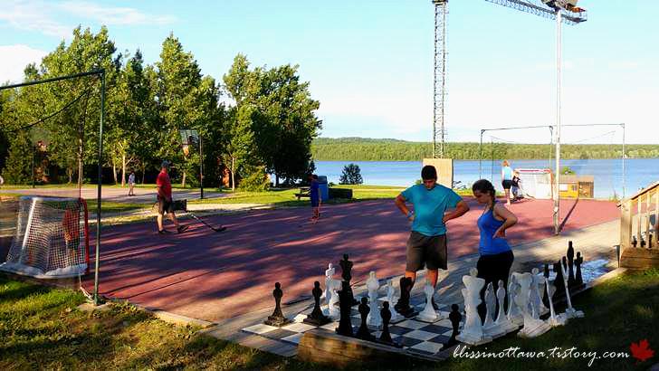 빅 체스 보드게임입니다