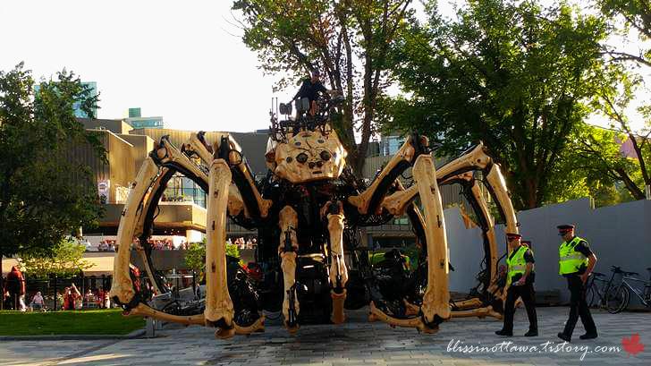 동물 기계 거미 쿠모입니다