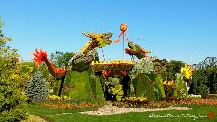 중국 베이징 용춤 식물 모자이크입니다
