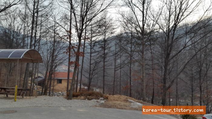 [보은여행-알프스빌리지]충북알프스 자연휴양림