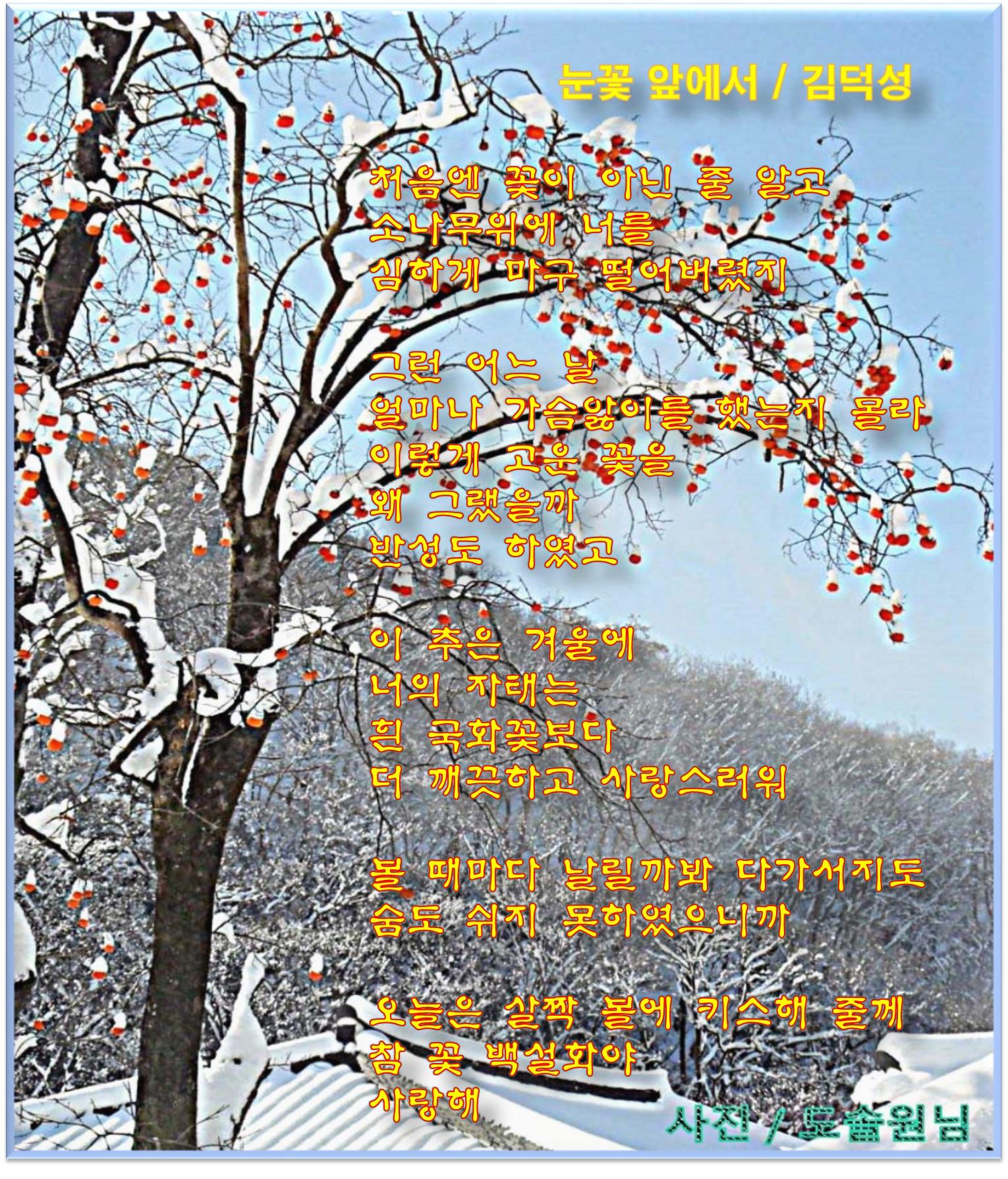 이 글은 파워포인트에서 만든 이미지입니다.  눈 꽃 앞에서 / 김덕성