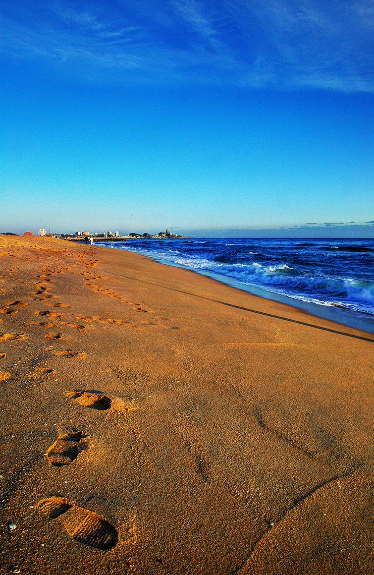 모래사장에 내가 지나온 발자욱이 깊게 새겨있고 그 옆으로 파란 파도가 출렁이는 사진.
