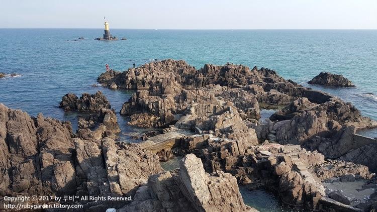 경주 감포읍 오류리 송대말등대 해안 풍경