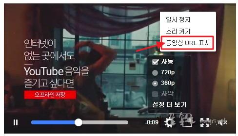 동영상 URL 표시
