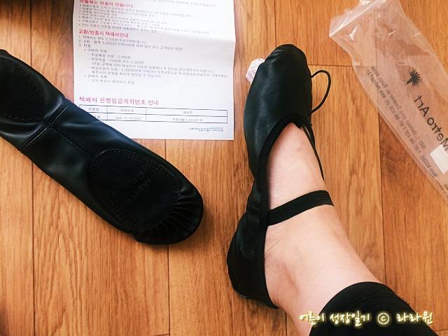 줌바댄스 신발 발레슈즈