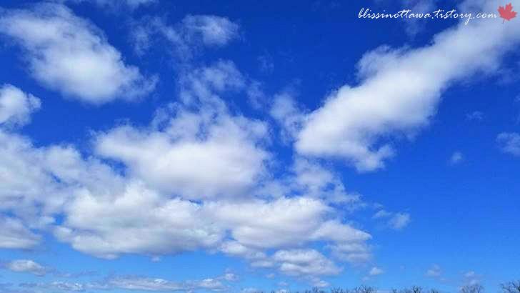하늘입니다