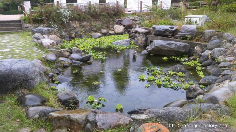 박경리 문학공원 작은 연못