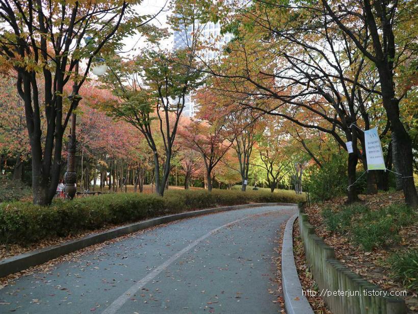 가을 산책길
