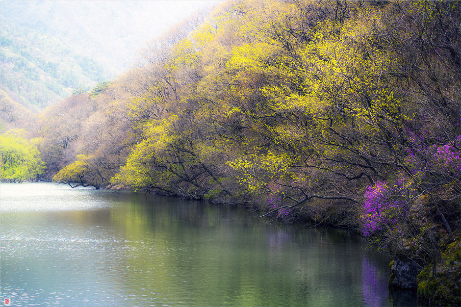 [삼성NX300] 봄을 기다립니다<2>