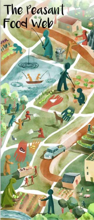 기업형 대규모 농업 · 가족형 소규모 농업