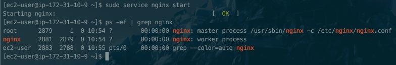 nginx1